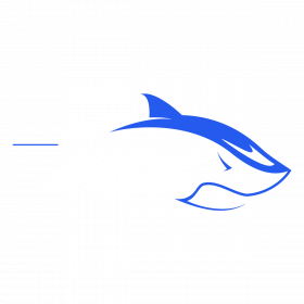 Shark Gaming 2021 Logo Print 3