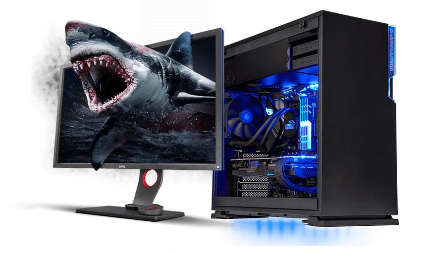 Shark Gaming Esport Edition