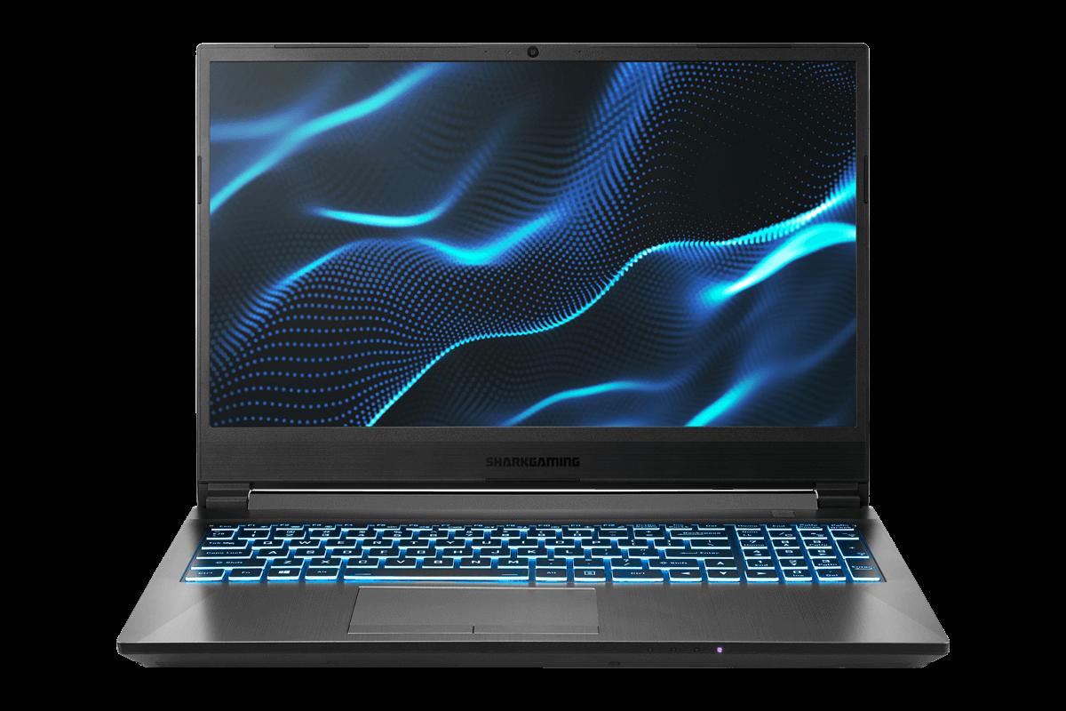 Shark Gaming 6G15-60 Laptop