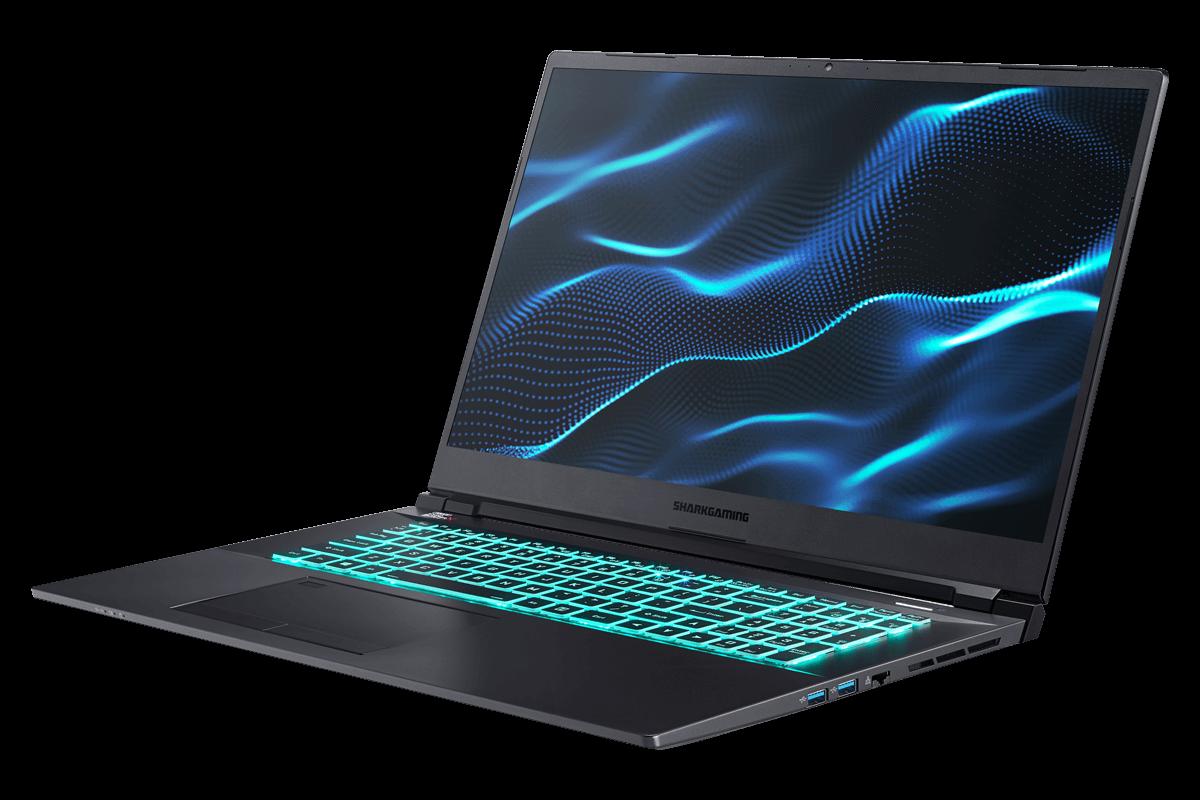 Shark Gaming 6G17-80 Laptop